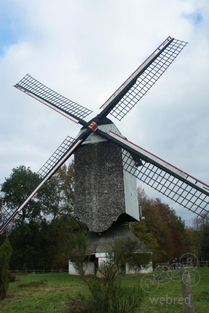 De familienaam Windmolders